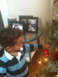 Young boy admiring Christmas tree.